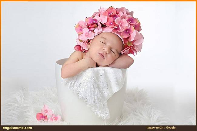Top 50 Mesmerizing Indian Baby Girl Names Inspired by Flowers
