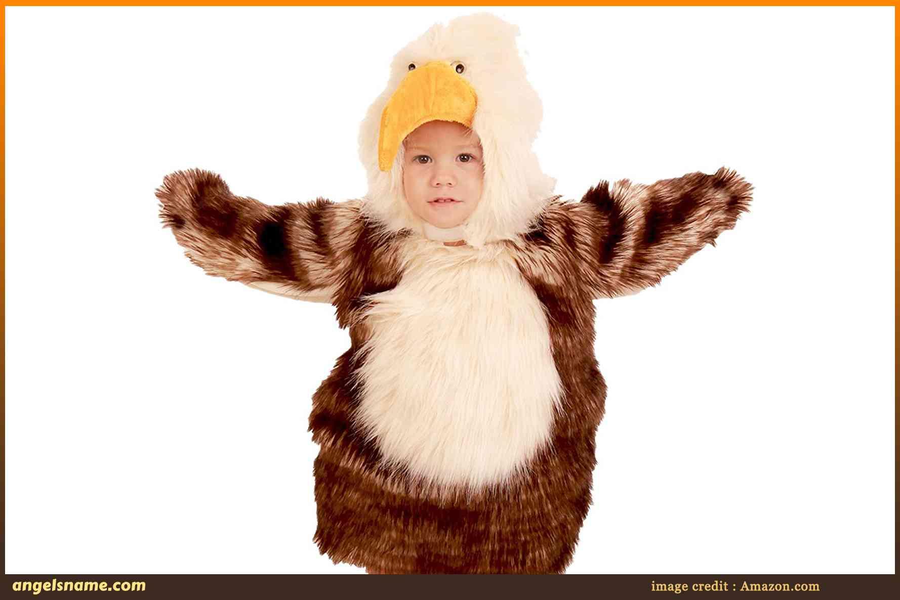 140 Baby Boy Names That Mean Eagle