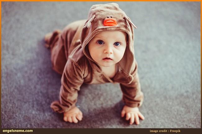 135 Energetic Baby Boy Names Inspired By Deer