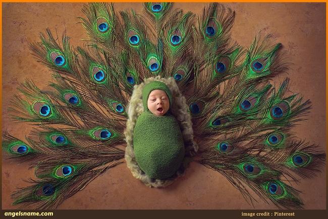 50 Top Boy Names That Mean Peacock