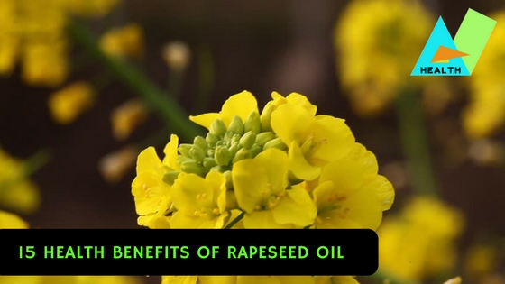 15 Health Benefits of Rapeseed Oil